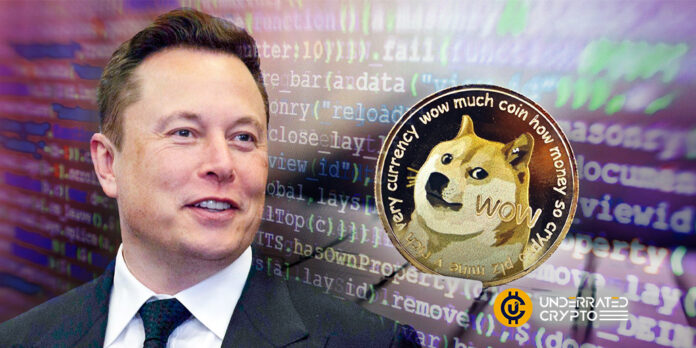 Elon Musk is looking for ideas to develop Dogecoin